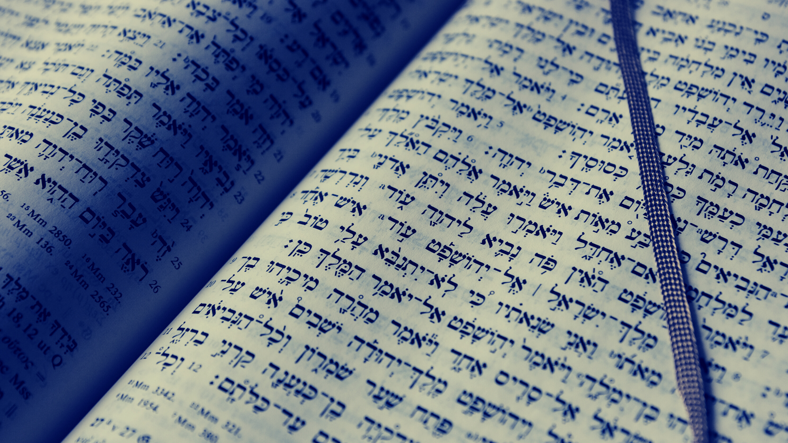 blue filtered siddur