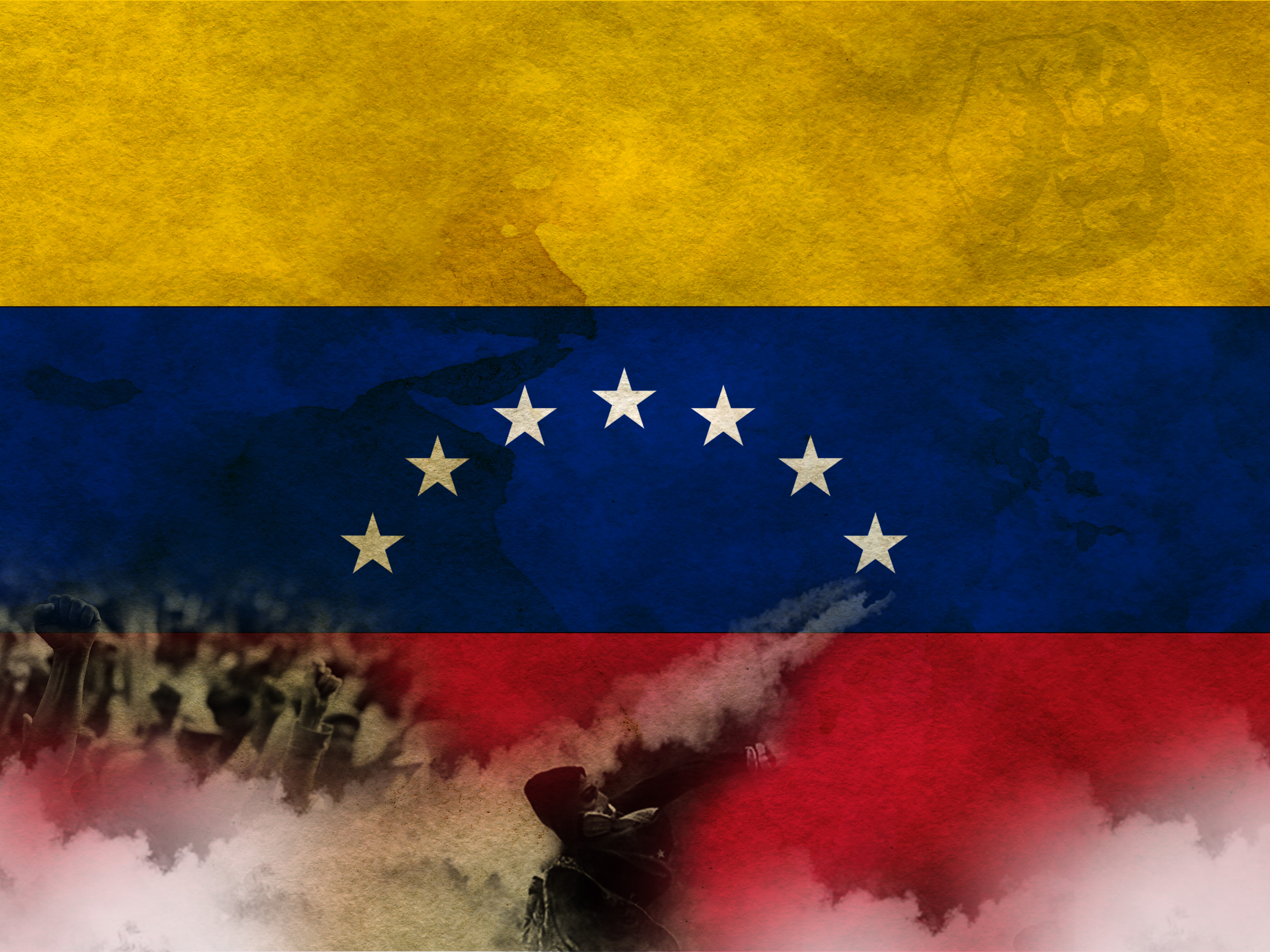 Venezuela's flag and protesters